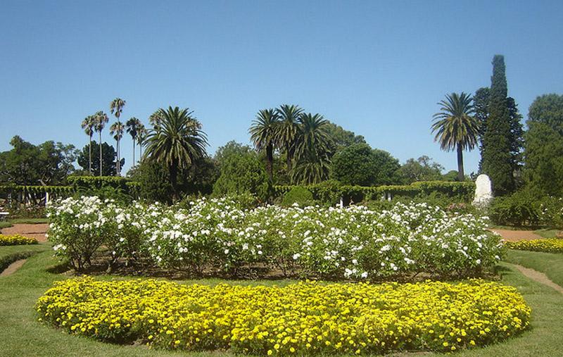 El Rosedal (El Jardín de las Rosas)