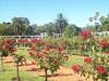 Buenos Aires - El Rosedal (Giardino delle Rose)