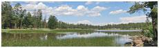 Lago Whitehorse
