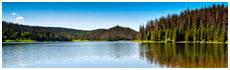 Lac Pearl