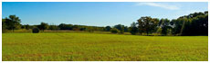 Moraine Hills