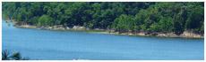 Barren River Lake