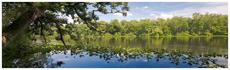 Pocomoke River State Park