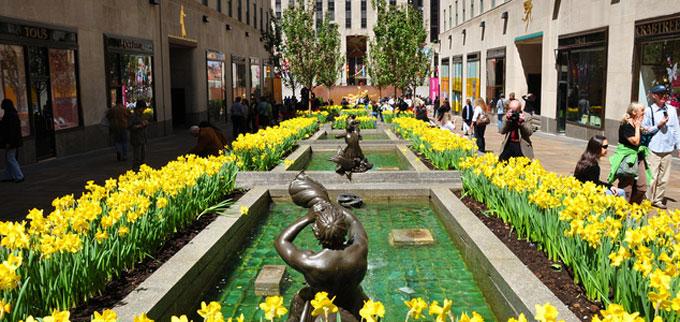 Ny city rockefeller webcam jeutie info click for details ny city