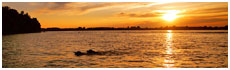 Lac Cochrane