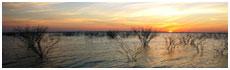 Lago Falcon
